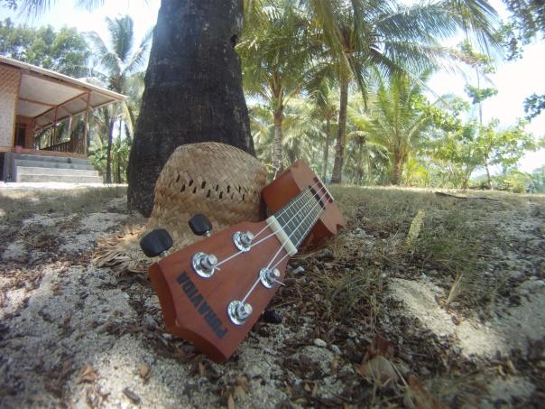 Espíritu Puravida guitar ukes